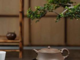 徐飞道竹紫砂壶作品