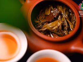 怎么辨别普洱茶好坏