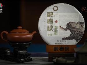 云南白药茶叶醉春秋普洱茶回首2014