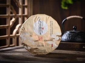 白茶当年的月光皓月白霜月光白茶紧压茶2021