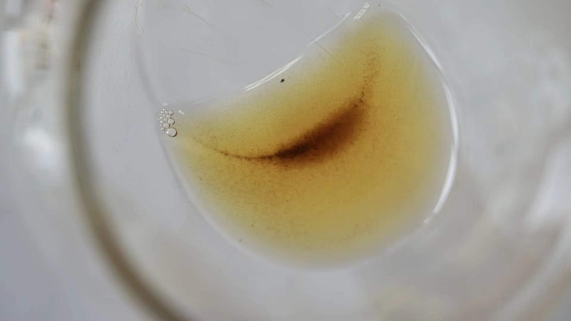 普洱茶茶汤浑浊怎么回事,图片为证