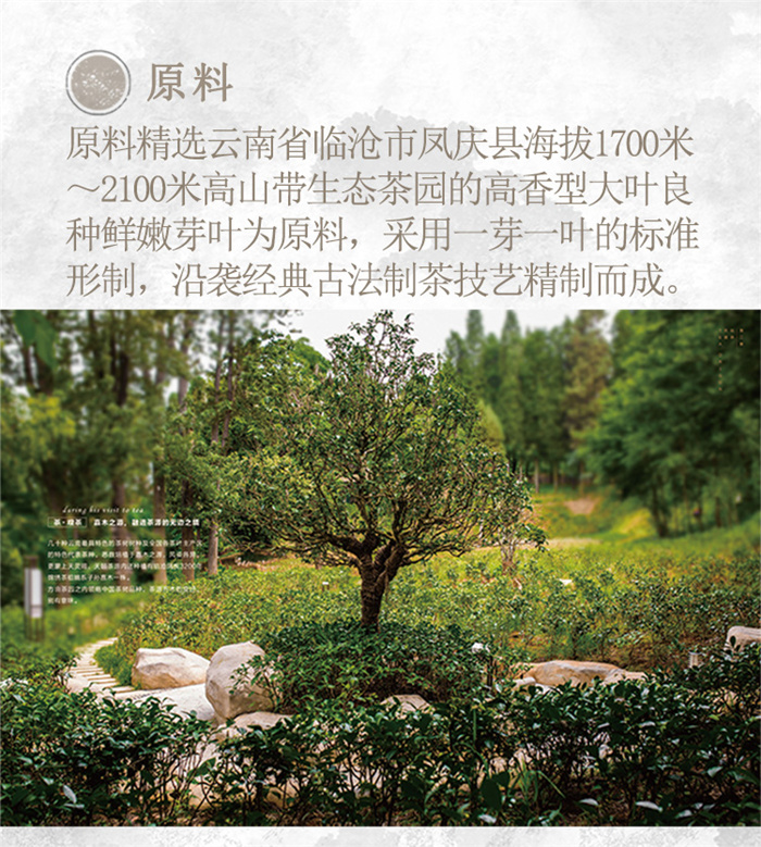 云南白药茶叶红瑞徕滇红茶福运满堂礼盒(小)