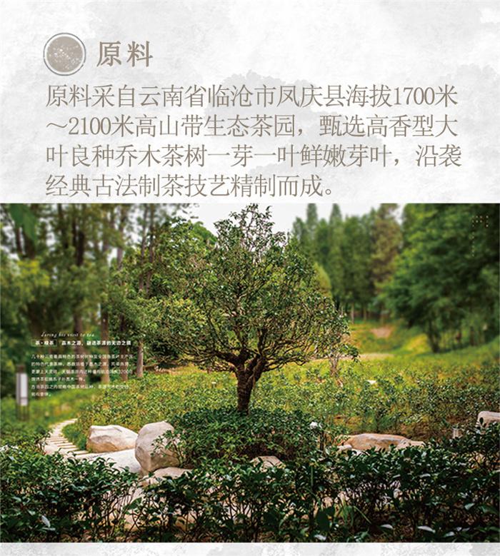 云南白药茶叶红瑞徕滇红茶金运禧